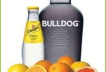 Best Gin Tonics ever! / Gràcies a la gent de TheGinBlog (www.theginblog.es)  per tenir un Blog tant excel·lent!