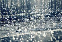 Rain / Immagini in un giorno di pioggia