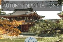 Discover | Autumn Travel Ideas / Ideas and inspiration for fall/autumn destinations.