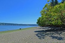 Hazel Point Beach Cottage / Vacation Rental. Remote and rustic Hood Canal cottage with expansive views