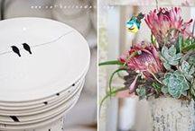 Ceramics - Karoo Inspired