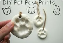 For my pets