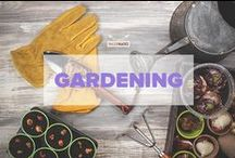 Gardening / A collection of useful Paleo gardening tips and ideas for all nature lovers! / by PaleoHacks
