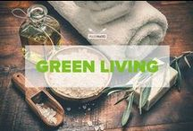 Green Living / A collection of hints and tips for natural remedies and green living ideas for a healthier lifestyle!  / by PaleoHacks