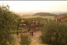 Gli esterni del Borgo - The exteriors of the village / Gli esterni dell'#agriturismo Antico Borgo Poggiarello - The exteriors of Antico Borgo Poggiarello #farmhouse