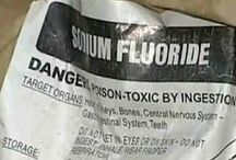 Fluoridated Water is TOXIC / Having watched my spouse drinking glass after glass of fluoridated water over the last 12 years, and his pains, aches and medical problems getting worse and worse, and his doctor just prescribing drug after drug, with no interest in finding the CAUSE, it finally occurred to me this week that maybe the fluoridated water was causing all his problems. This board is to show all the BAD things about Fluoridated water and why it is TOXIC for humans.