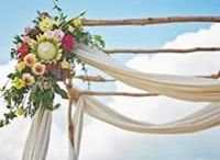 Aisle & Canopy Floral / Aisle, Canopy and Arbour floral inspiration with Splash Events