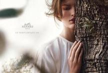 Fashion - Hermes