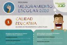 Institucional / Infografías sobre Fundación Educación 2020.