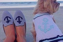 =^..^=   Beach ♥ Doggs  =^..^=