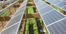 Solar Revolution (8) (10)