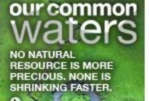 Protect Our Water / by Nurture Nature Project