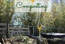 Outdoor Living / Gardening, backyard games, outdoor decor and more.