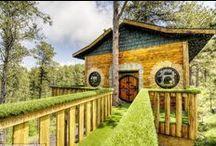 Amazing Properties