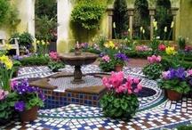 Gardens    / by Rita Anoffo
