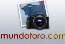 Fotografías / Fotografías publicadas en Mundotoro.com