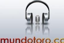 Crónicas / Las crónicas de Mundotoro.com