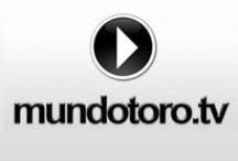 Vídeos / Vídeos subidos a la web de Mundotoro.com y Mundotoro.tv