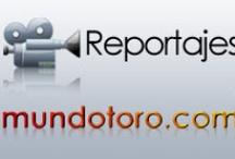 Reportajes / Imágenes de los reportajes de Mundotoro.com