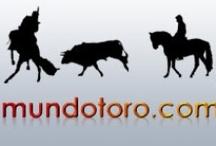 Rejones / Todo lo relacionado con el mundo de los rejones publicado en Mundotoro.com y Mundoestribo.com.