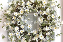 *•✿Daisy / Daisies are so cheery don't you think? / by Southern Charm Wreaths