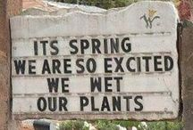 Garden Humour / Some fun in the garden!