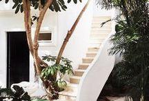 Viviendo afuera / Jardín, terraza, balcón...
