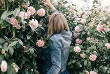 rose tyler