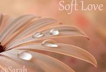 ~ ♥ Soft Love ♥ ~ / Soft colours, soft lighting, soft photography ♥ No nudity, no unrelated pins, no advertising and keep the descriptions short please, thank you! Comment below one of my pins 'Add me' to receive an invite or comment below a pin on my 'Welcome' board, happy pinning!