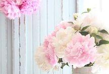 Fleurs et jardinage
