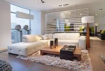 Scandinavian Contemporary Style / Scandinavian design has had an important influence on contemporary furniture. Decorative qualities with simple lines create modern elegance.