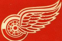 Hockey / The Detroit Red Wings.   Some photos by Audrey Lambert