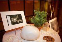 25ᵗʰ February, 2014: New York Celebrates the Opening of Vana Malsi Estate