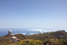 Canary Island La Palma / Images of the flower island