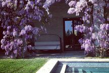Gardens / by Eva Rosado- Interior Designer