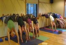 Teton Yoga Shala Events