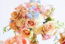 ♡ FaiRyTaLe FloWeRs ♡ / by Karen Naylor