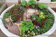 Garden and outdoors / Garden