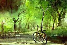 Bicicletas/ Bicycles
