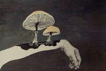 fungus amongus / mushrooooms