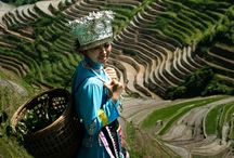 Longsheng County China / Longsheng County, the rice terraces of Longji and the surrounding villages ,  Guangxi,  China