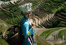 Longsheng County China / Longsheng County, the rice terraces of Longji and the surrounding villages ,  Guangxi,  China