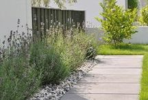 Garden Life !!!