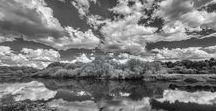 Black & White Photography for your Home Decor / Beautiful Black and White Photography created by Jon Evan Glaser and made available for sale thru Fine Art America(FAA). His landscape photography are from different national parks including Yosemite, Yellowstone, Grand Tetons and Glacier in the U.S. and Banff in Canada, as well as the coastlines of Maine and Oregon, and Iceland. All for your Home Decoration and Interior Design needs. #blackandwhitephotography #black&whitephotography #landscapephotography