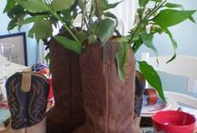 Country Western party ideas / Country Western Party ideas