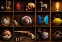 Cabinet of Curiosity / by Kelly Roy