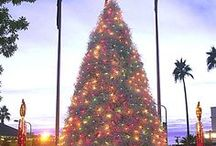 Explore Chandler / Things to do and see in fabulous Chandler, AZ!