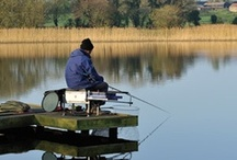 Coarse & Pike Fishing Holidays / The best fishing in Europe for big Bream, Carp and Pike. Prolific coarse fishing holidays at our top fully researched venues.