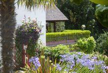 Our garden Tanglewood through the seasons.
