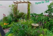 RHS Tatton flower show 2015 / The Cheshire flower show was July 22-26 2015, and our Silver medal winning Herb Society stand was in the Plant Heritage Marquee